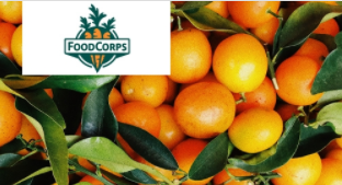 Cover-Image-FoodCorps